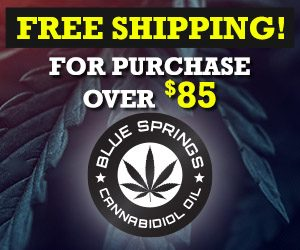 Free Shipping on purchases over $85 banner